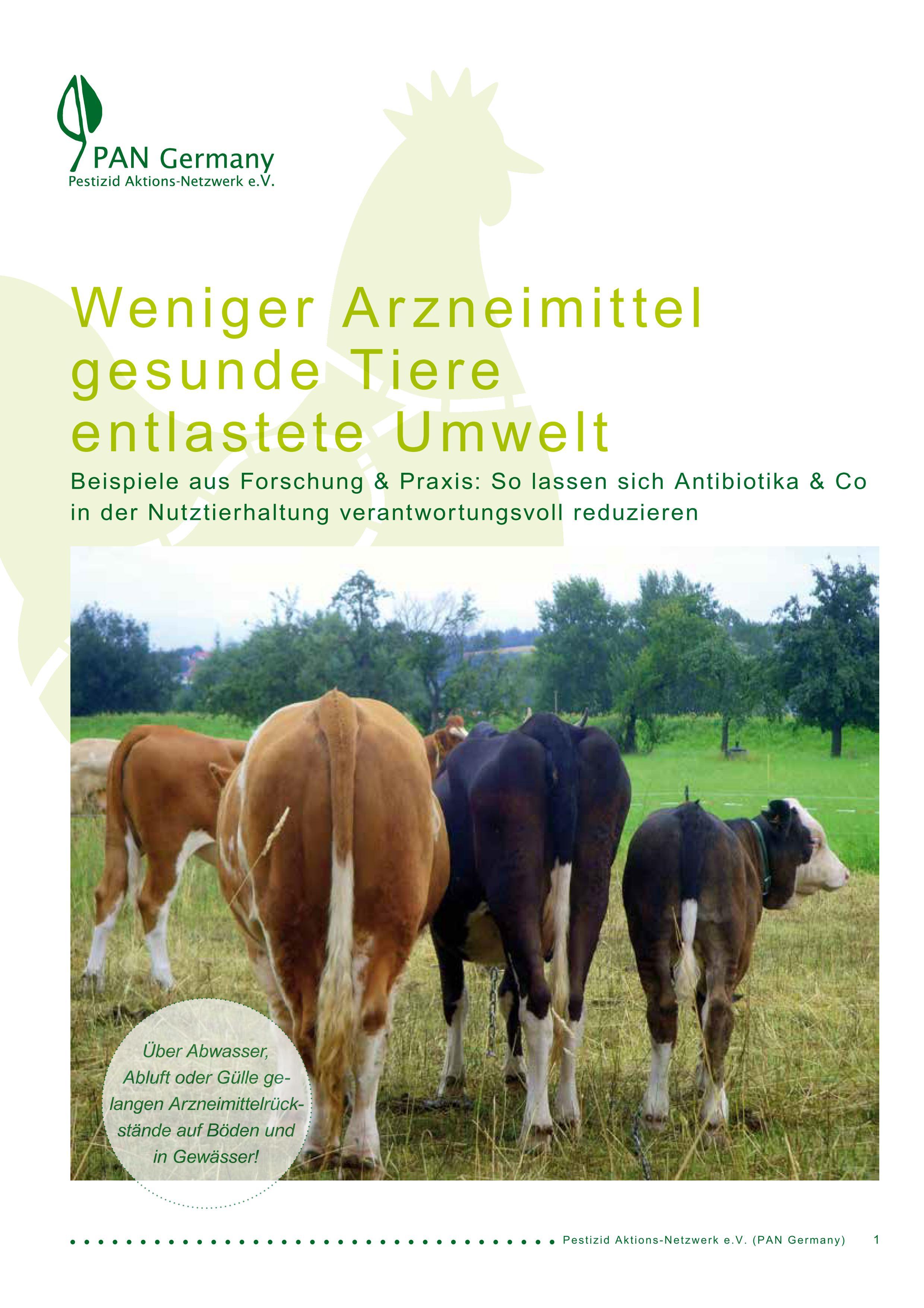 Titelblatt der Publikation Arzneimittel in der Umwelt